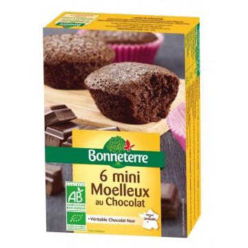 6 mini moelleux au chocolat noir